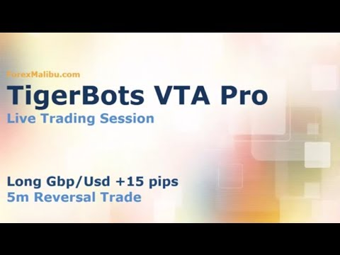 VTA PRO Forex Day Trading Software – Live Trade +15 pips!