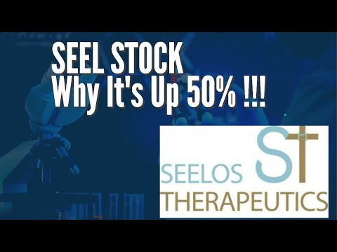 SEEL Stock (Seelos Therapeutics, Inc.) – Why It Was Up Over 50% !!