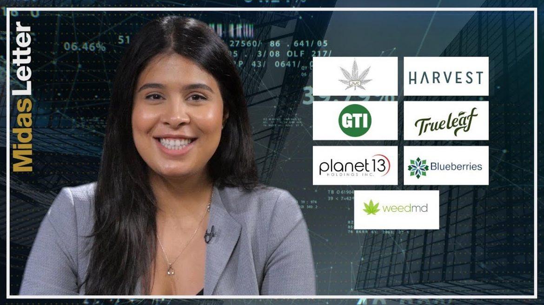 Cannabis Stock Market News June 5 2019 – James E. Wagner, Green Thumb Industries, Planet 13, WEEDMD