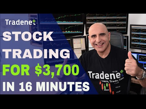 Live Stock Trading for $3,700